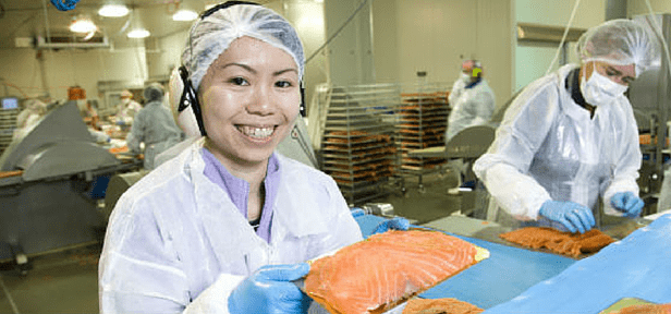 Prepare for a Career in the Canadian Food Manufacturing Industry