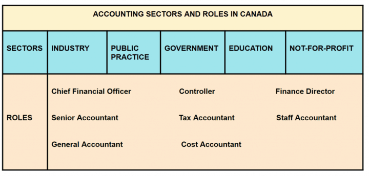 Accounting Sectors and Roles