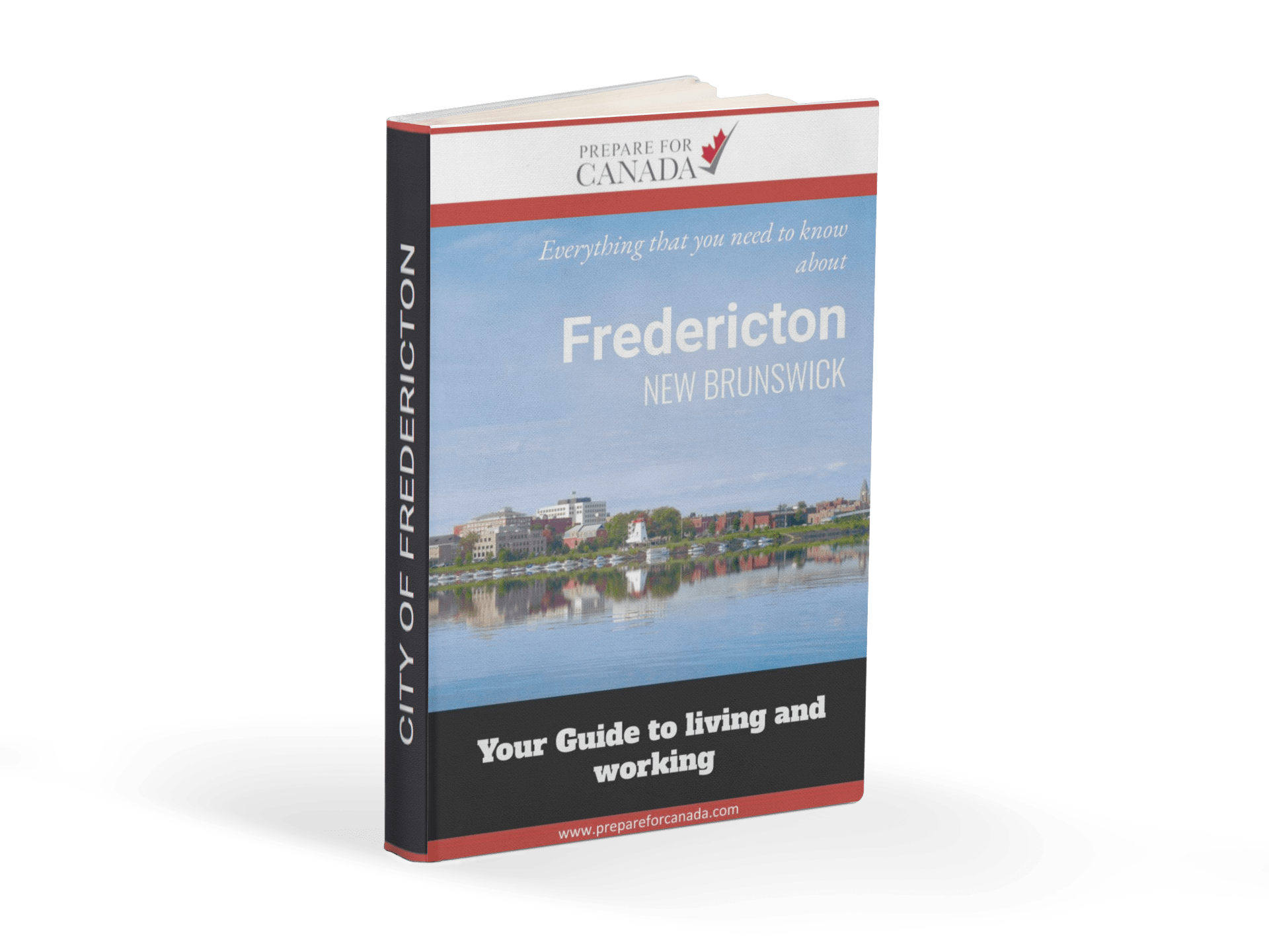 Frederiction Ebook Cover