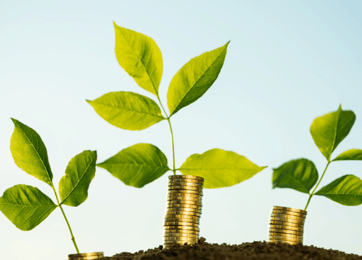 Savings in Canada: Helping Newcomers Invest