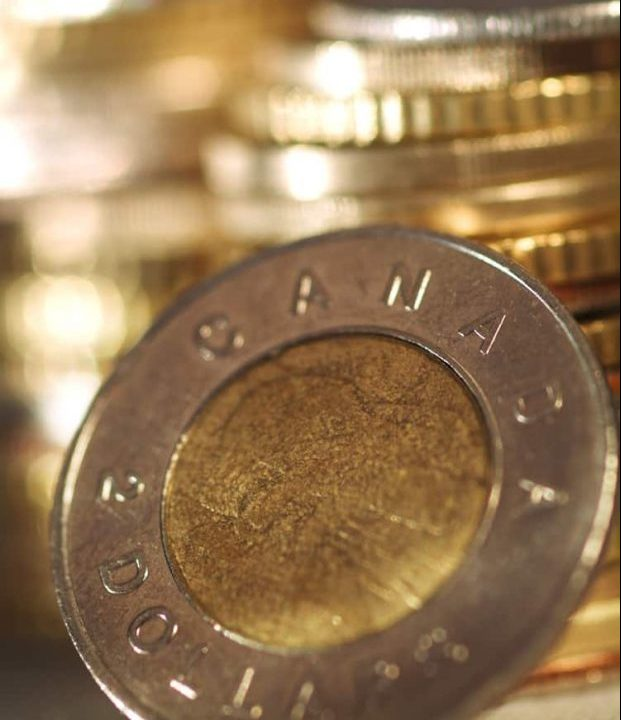 Manage your personal finances. Stack of Canadian toonies.